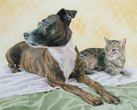 Lola and Tarzan (Dog & Cat Portrait)